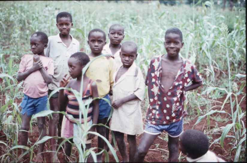 Kenia 047 ICRAF